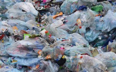 Question à Marghem sur l'interdiction des plastiques jetables à usage unique