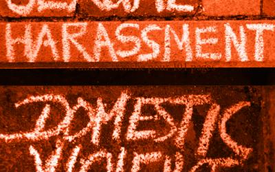 Question au Ministre Geens sur le rapport d'évaluation du GREVIO sur les violences faites aux femmes en Belgique